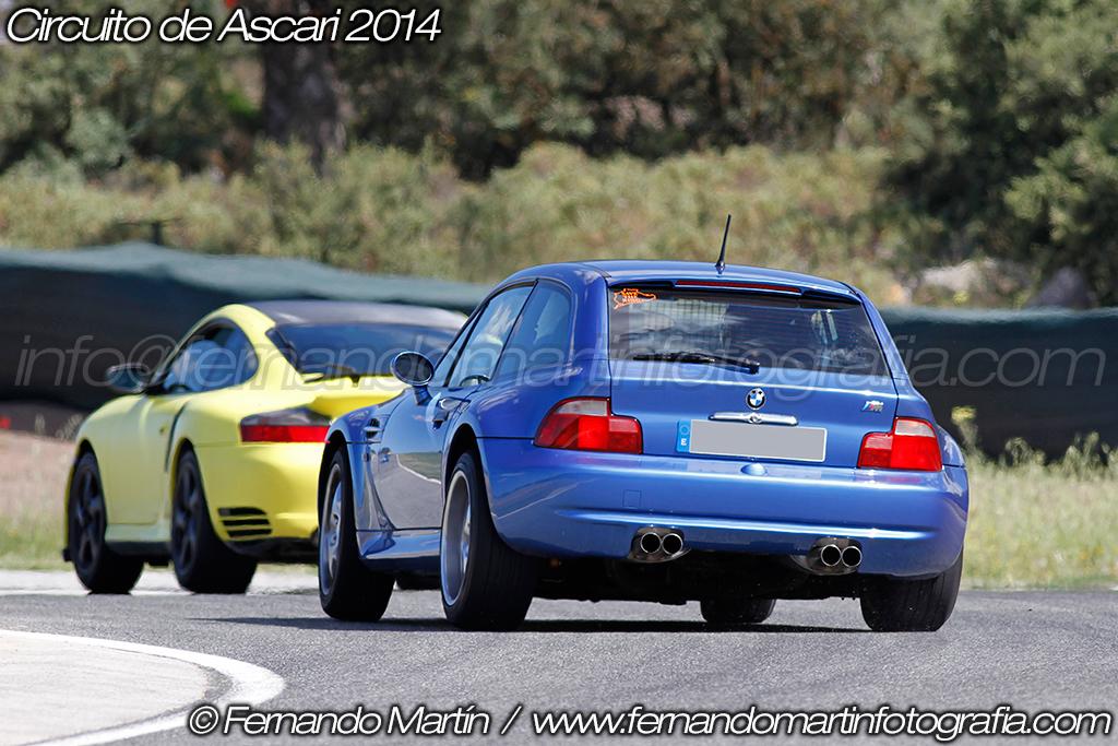 Ascari 2014