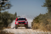 Rally-Andalucia-2020-0487